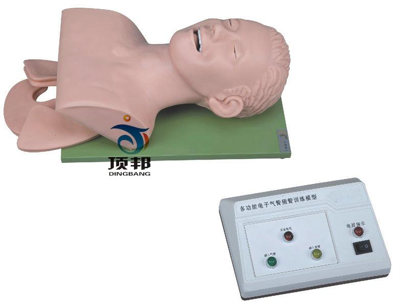 电子人体气管插管训练模型