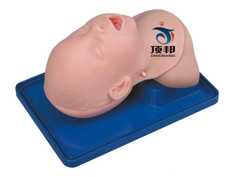 高级婴儿气管插管训练模型