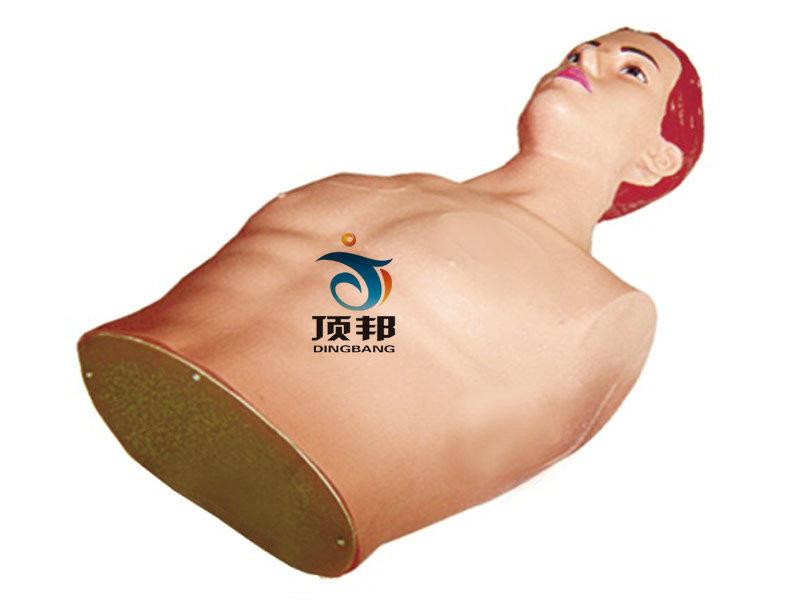 心包穿刺与心内注射训练模型