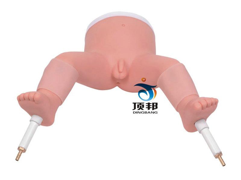 高级婴儿骨髓穿刺模型