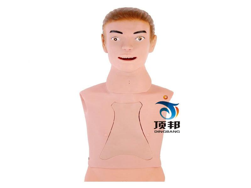 高级鼻饲管与气管护理模型