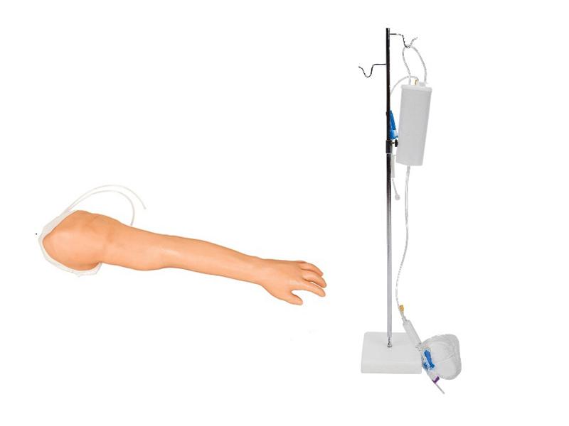 完整静脉穿刺及注射训练手臂模型
