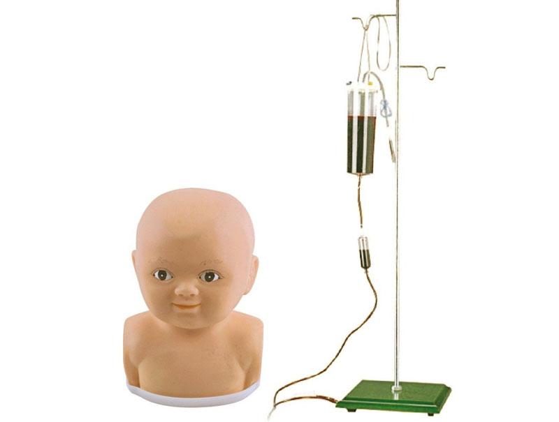 婴儿头部注射模型